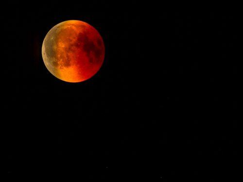 All'Ombra della Luna: Presentato il libro di poesie di Michele Messina (video)
